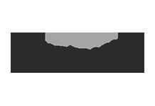Patterson - logo